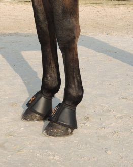 Kentucky Springglocken Leder Seitenansicht Pferdebeine