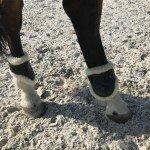Streichkappen im Sand mit zwei Beinen