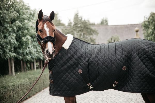 Kentucky Horsewear Stalldecke Schwarz Kopf