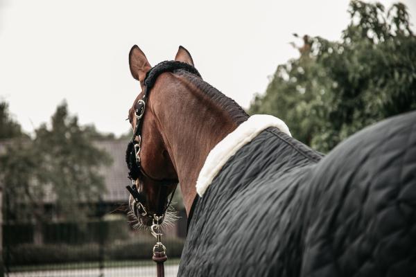 Kentucky Horsewear Stalldecke Schwarz Rueckansicht
