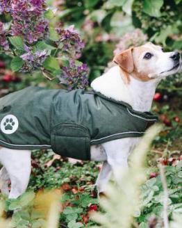 Hundemantel Wasserdicht Hund