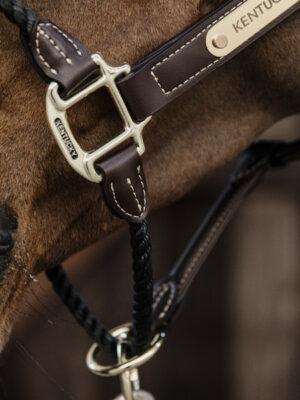 Leder-Halfter-Rope-Detail