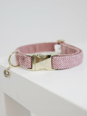 Kentucky_Dogwear_Hundehalsband_Wool_Katalog