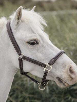 Kentucky-Horsewear-Leder-Halfter-Schaffell-Pony