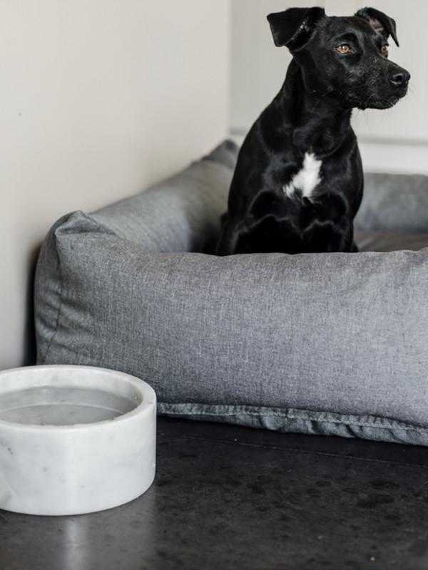 Futternapf-Marmor-Large-Weiss-Hund