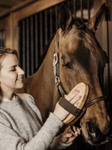 Overall-brush-soft-Pferd