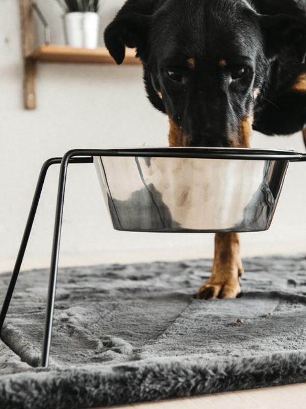 Hundenapf-Komfort-Schwarz