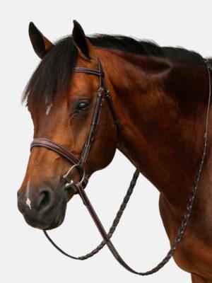 Hunter-Braun-Pferdekopf