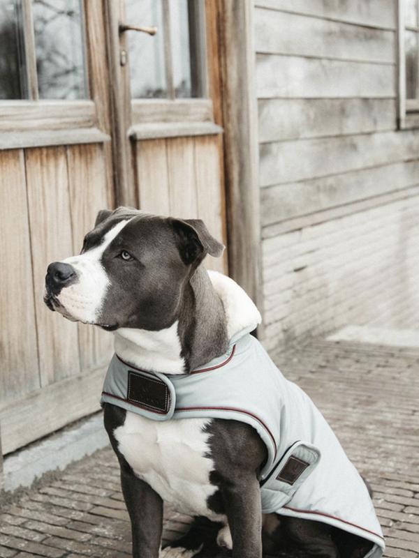 kentucky-dogwear-hundemantel-wasserdicht-160g-dusty-blue